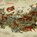 Какие животные обитают в России?