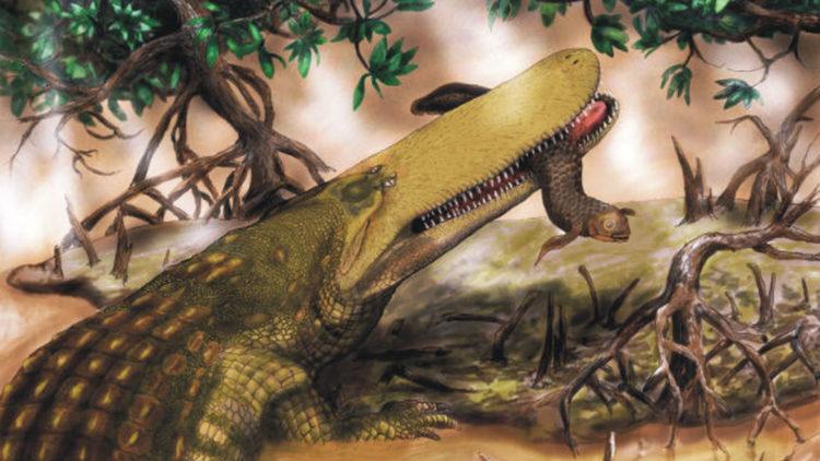 Доисторический крокодил